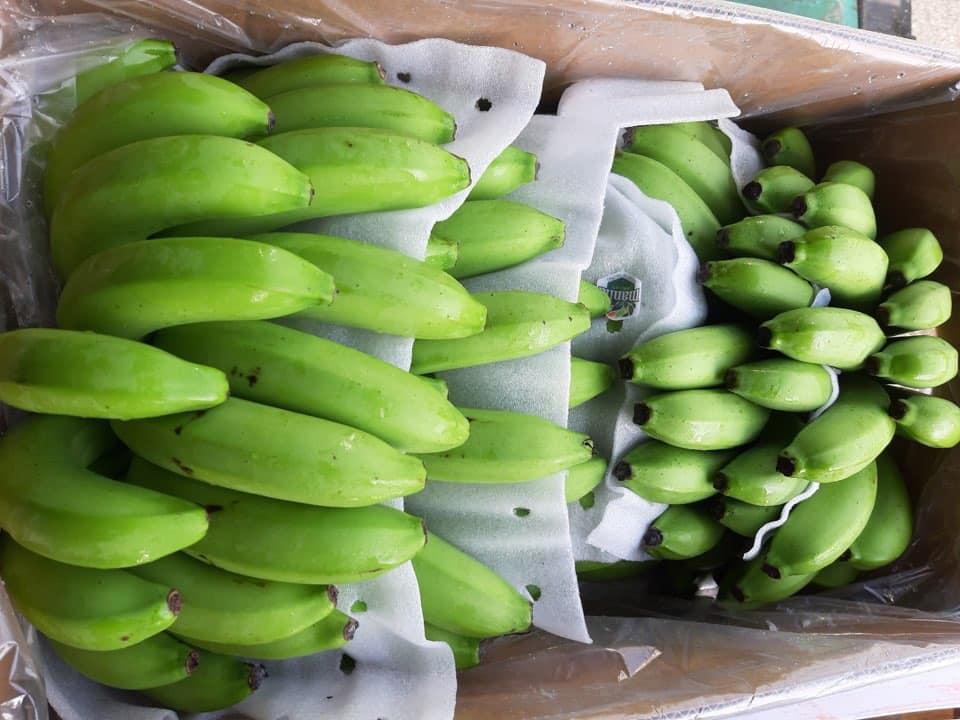 Bỏ 25 triệu đồng mua cả vườn chuối, tiểu thương thắng đậm khi bán dịp Tết - Ảnh 3.