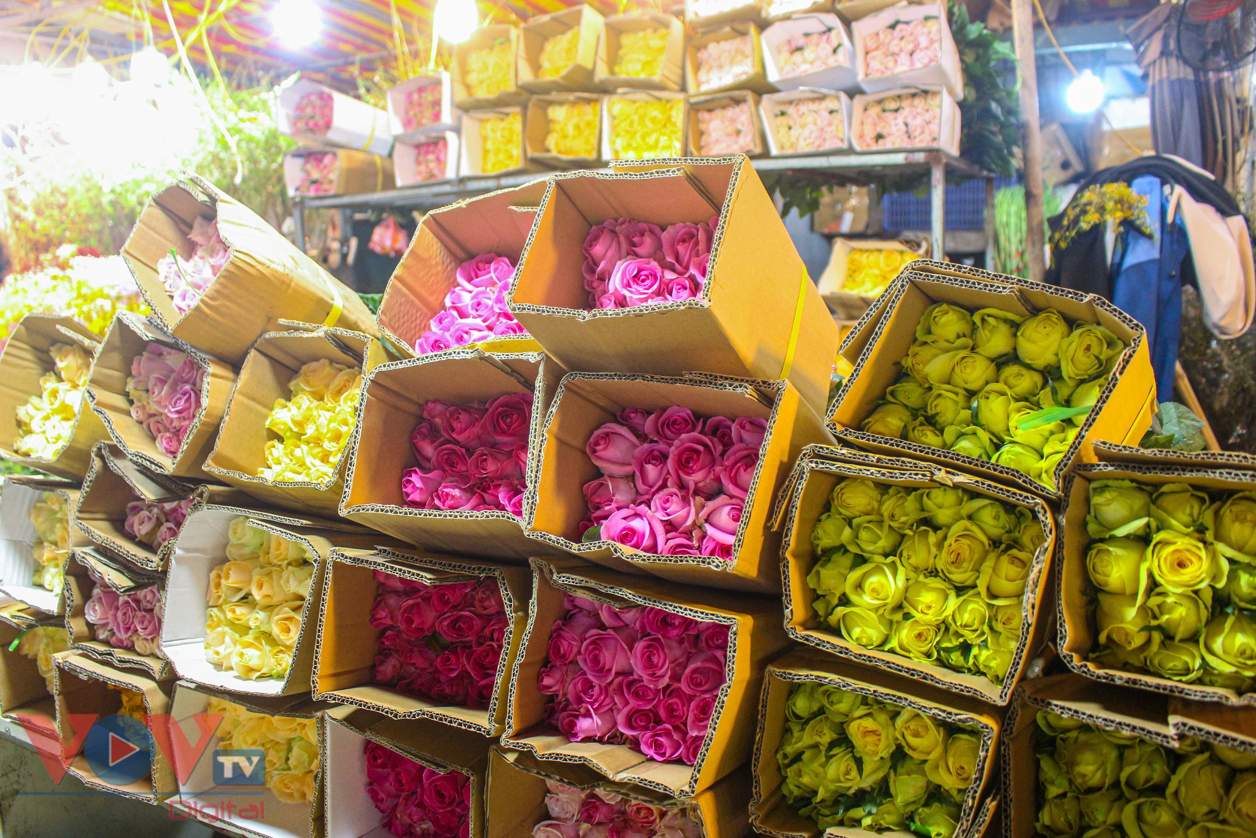 Chợ hoa Quảng An tất bật trong đêm những ngày cận Tết - Ảnh 4.