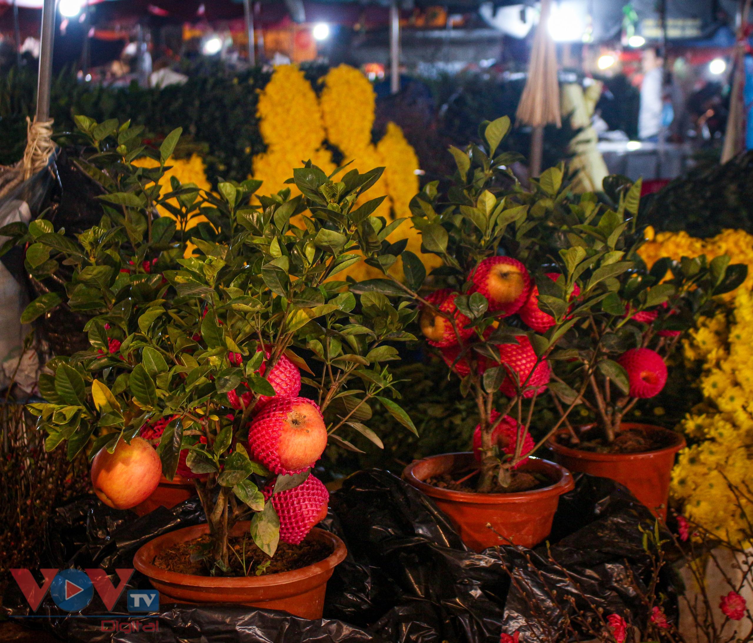 Chợ hoa Quảng An tất bật trong đêm những ngày cận Tết - Ảnh 16.