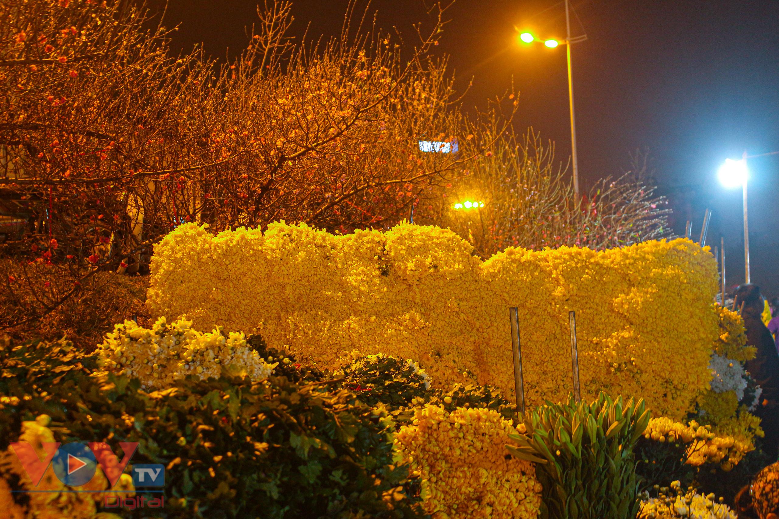 Chợ hoa Quảng An tất bật trong đêm những ngày cận Tết - Ảnh 18.