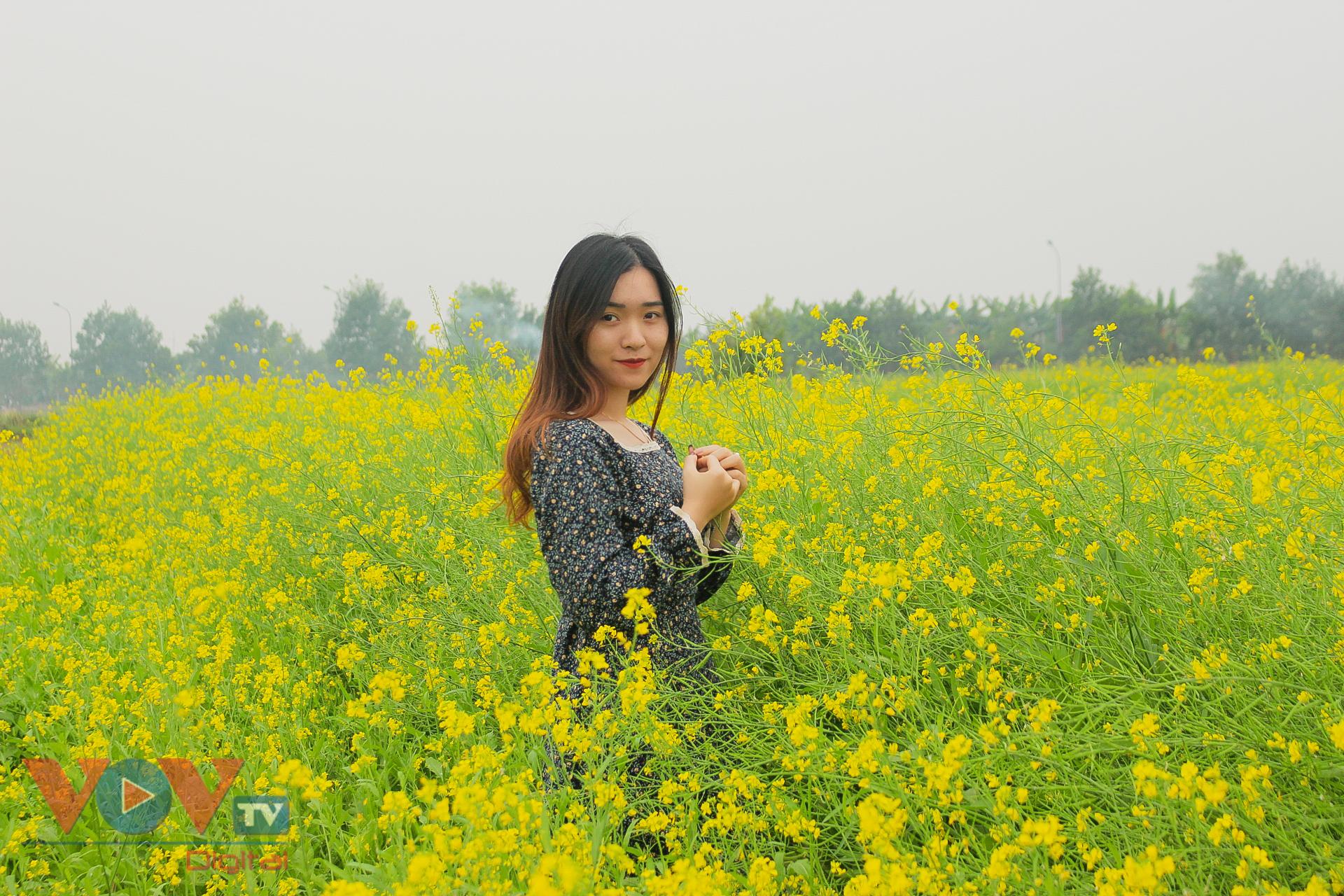 Rực rỡ cánh đồng hoa cải vàng ven sông - Ảnh 9.