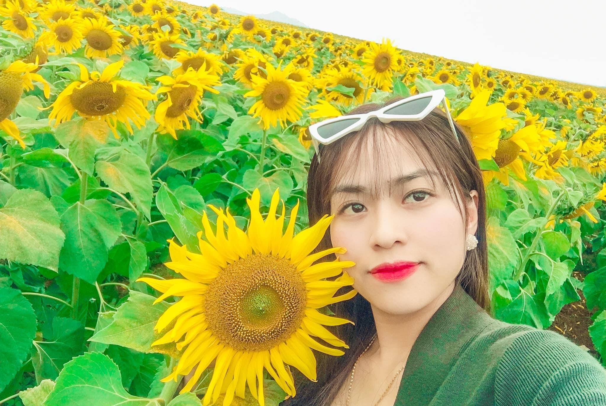 Vẻ đẹp bất tận của đồi hoa hướng dương, khiến dân tình