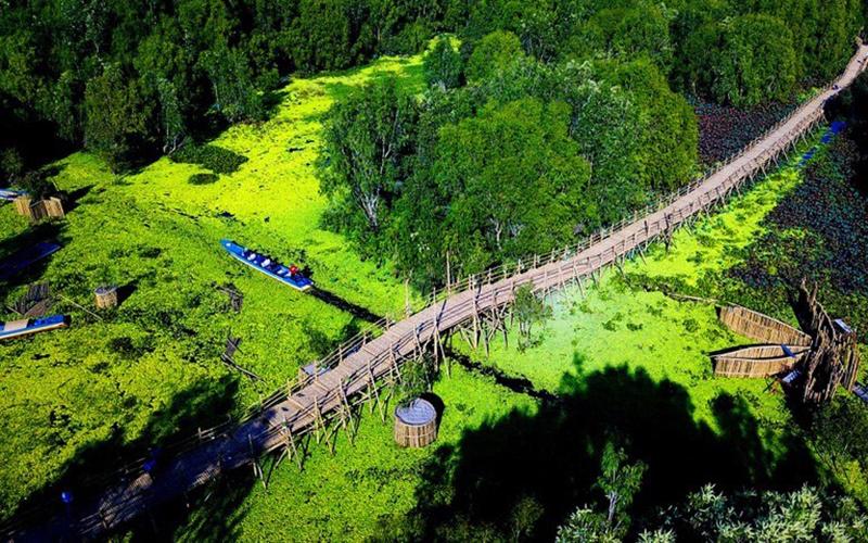 Khách du xuân rừng tràm Trà Sư, 'check-in' cầu tre dài nhất Việt Nam - Ảnh 1.