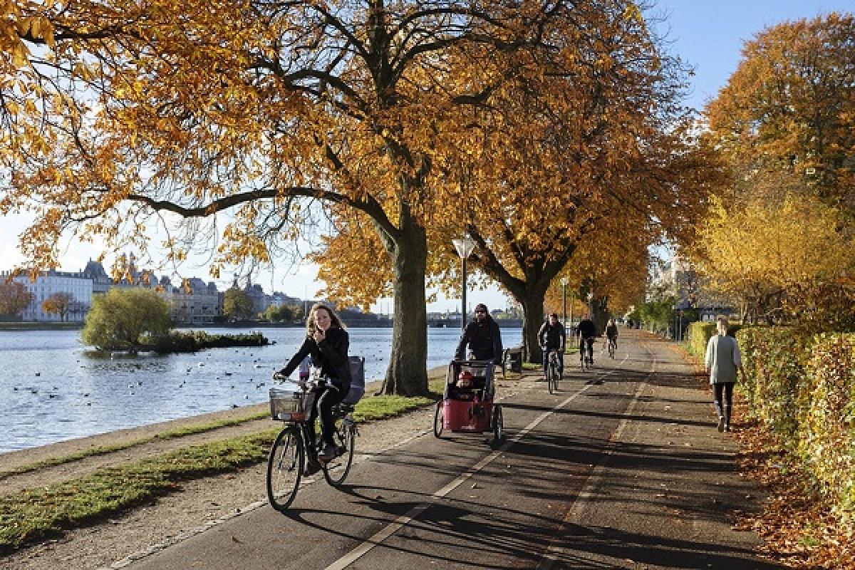 9 thành phố thân thiện với du lịch bằng xe đạp - Ảnh 1.