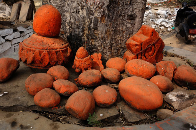 Đến Ấn Độ xem lễ hội cây - Ảnh 2.