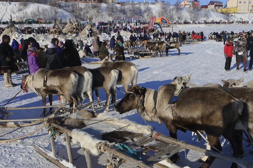 Rực rỡ sắc màu lễ hội người chăn hươu phương Bắc Nga - Ảnh 10.