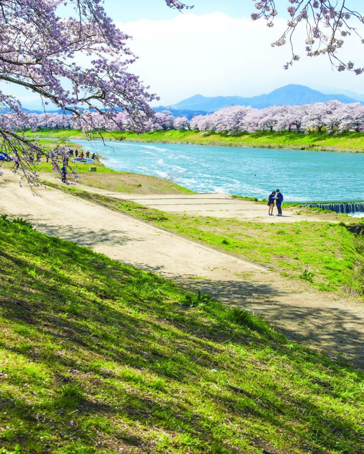 Vẻ đẹp kỳ thú tại quê hương samurai - Ảnh 4.