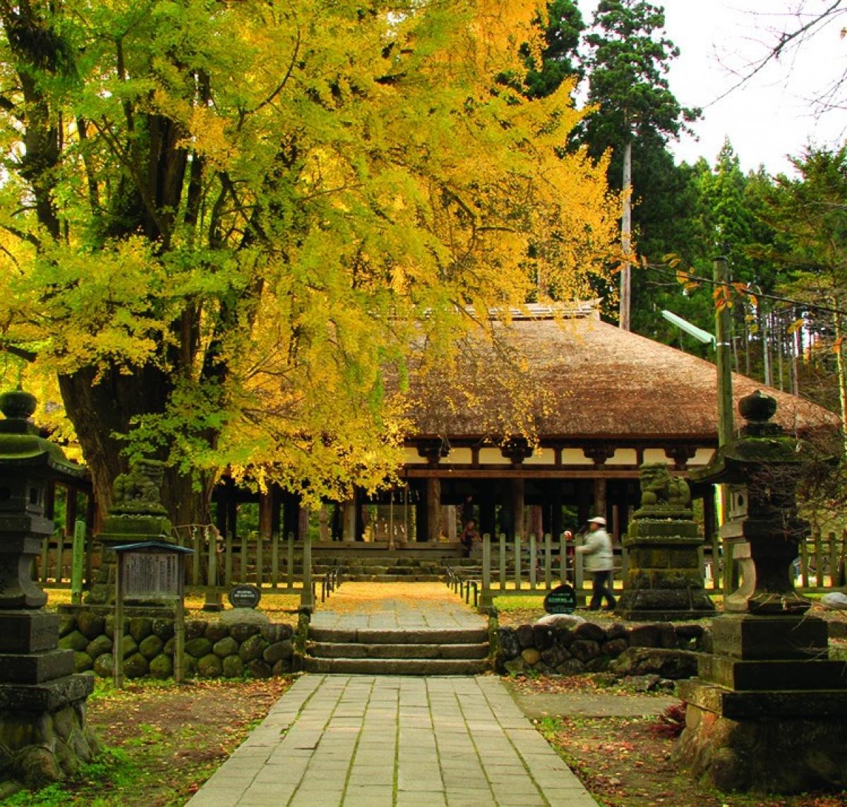 Vẻ đẹp kỳ thú tại quê hương samurai - Ảnh 9.
