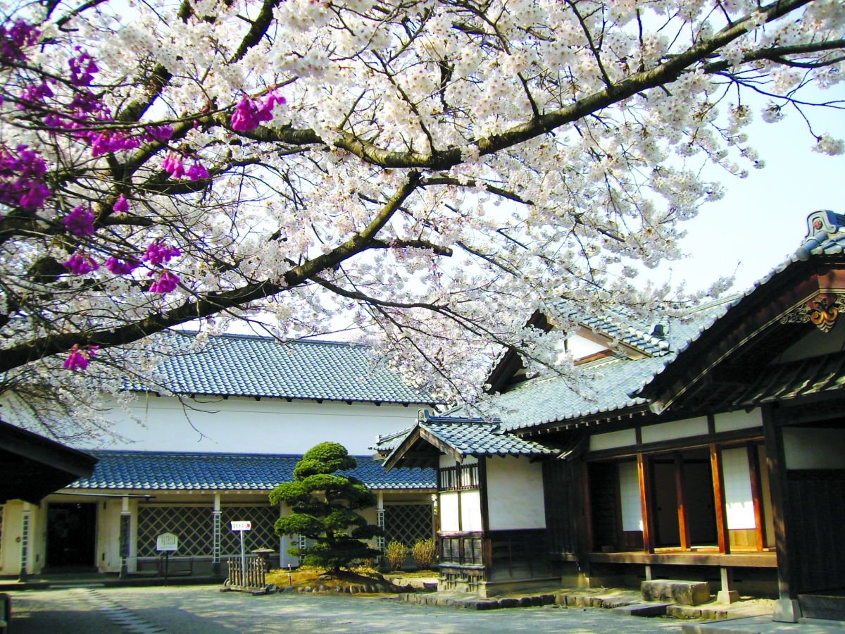 Vẻ đẹp kỳ thú tại quê hương samurai - Ảnh 17.