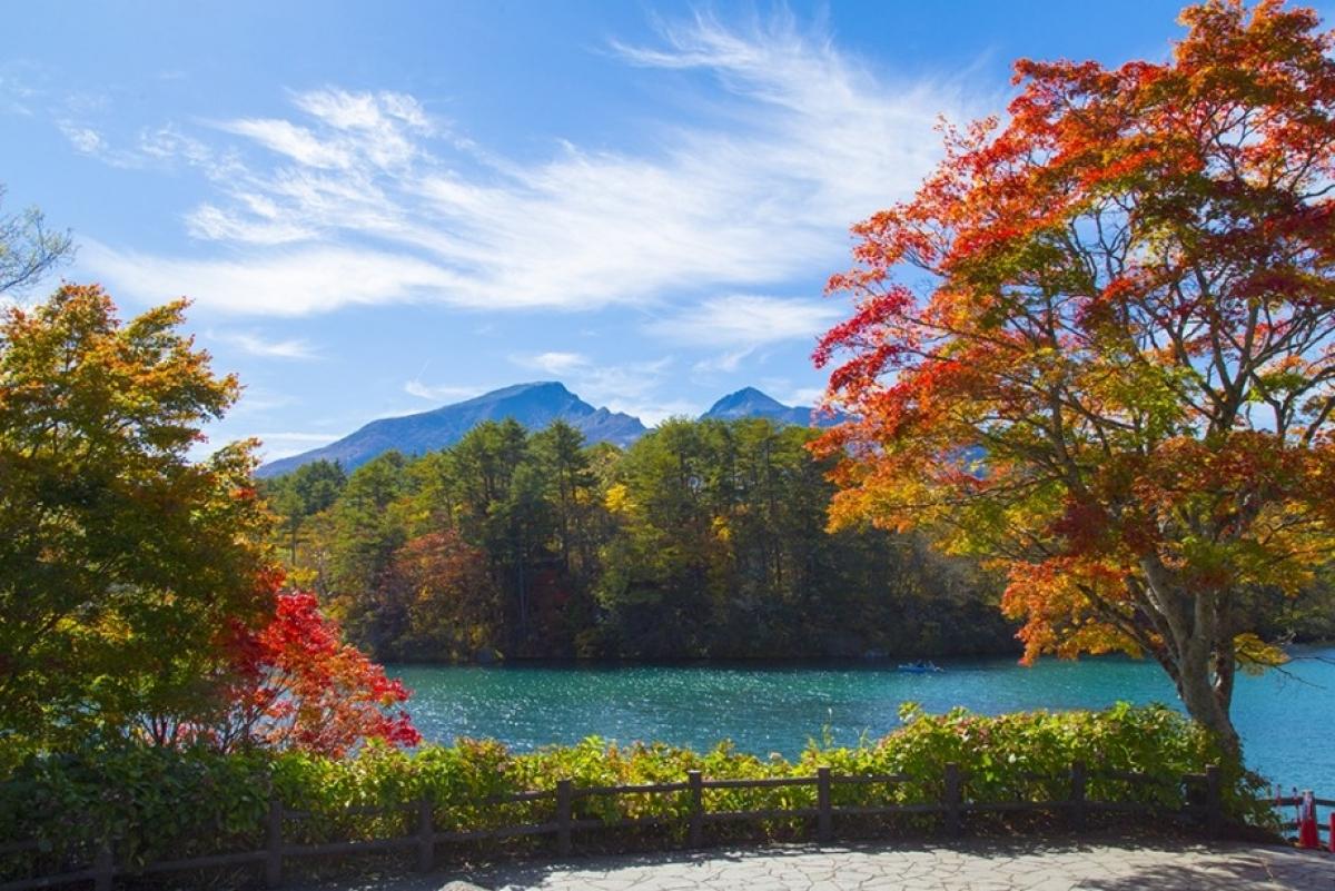 Vẻ đẹp kỳ thú tại quê hương samurai - Ảnh 10.