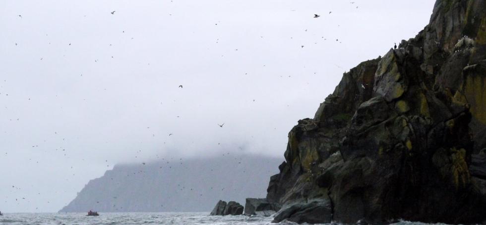 Lạ kỳ hai hòn đảo cách nhau 4km có thể 'quay ngược thời gian' - Ảnh 3.