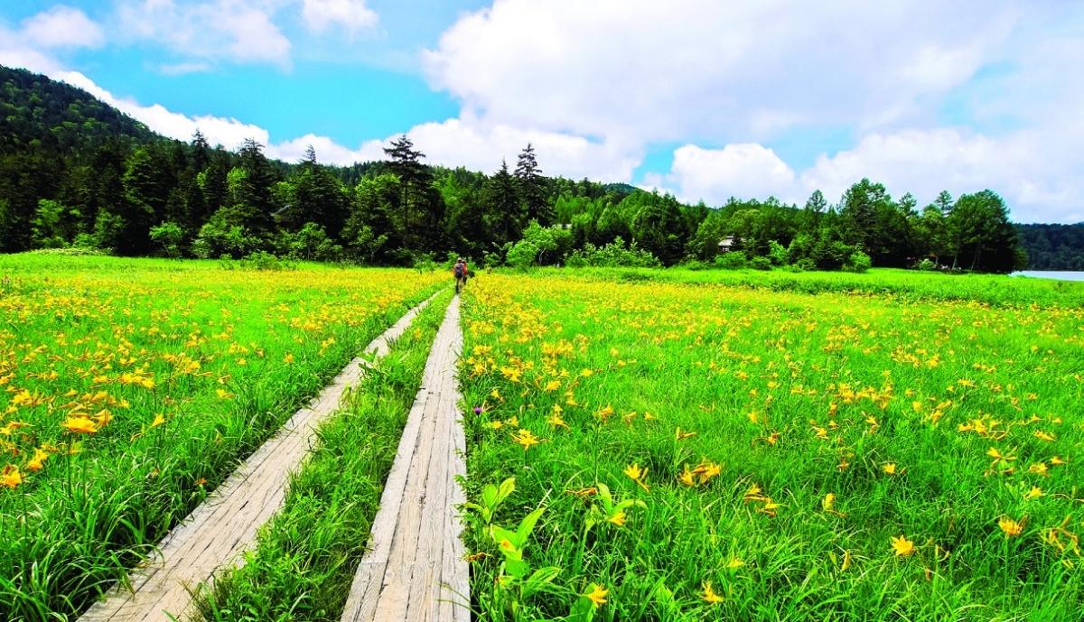 Vẻ đẹp kỳ thú tại quê hương samurai - Ảnh 7.