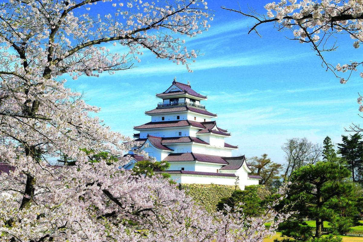 Vẻ đẹp kỳ thú tại quê hương samurai - Ảnh 2.