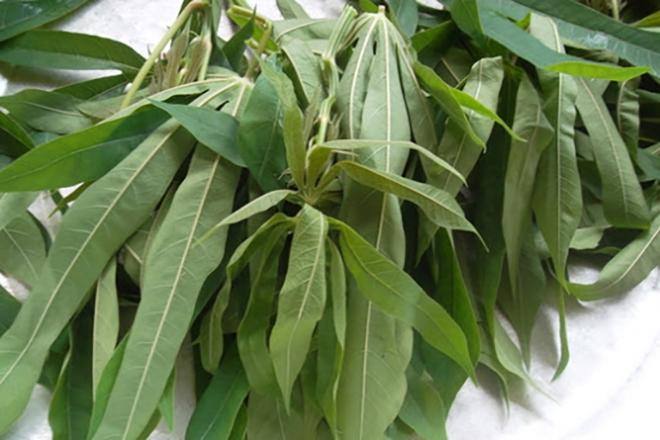 Canh rau sắn chua nấu cá - Đặc sản bình dị của người dân đất Tổ Vua Hùng - Ảnh 3.
