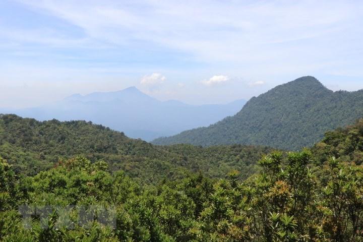 Vườn quốc gia Bạch Mã - kho báu 'di sản thiên nhiên'  - Ảnh 1.