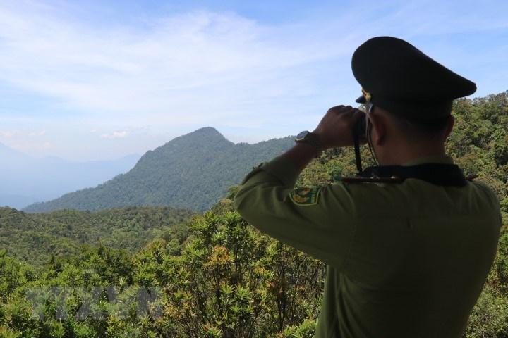 Vườn quốc gia Bạch Mã - kho báu 'di sản thiên nhiên'  - Ảnh 5.