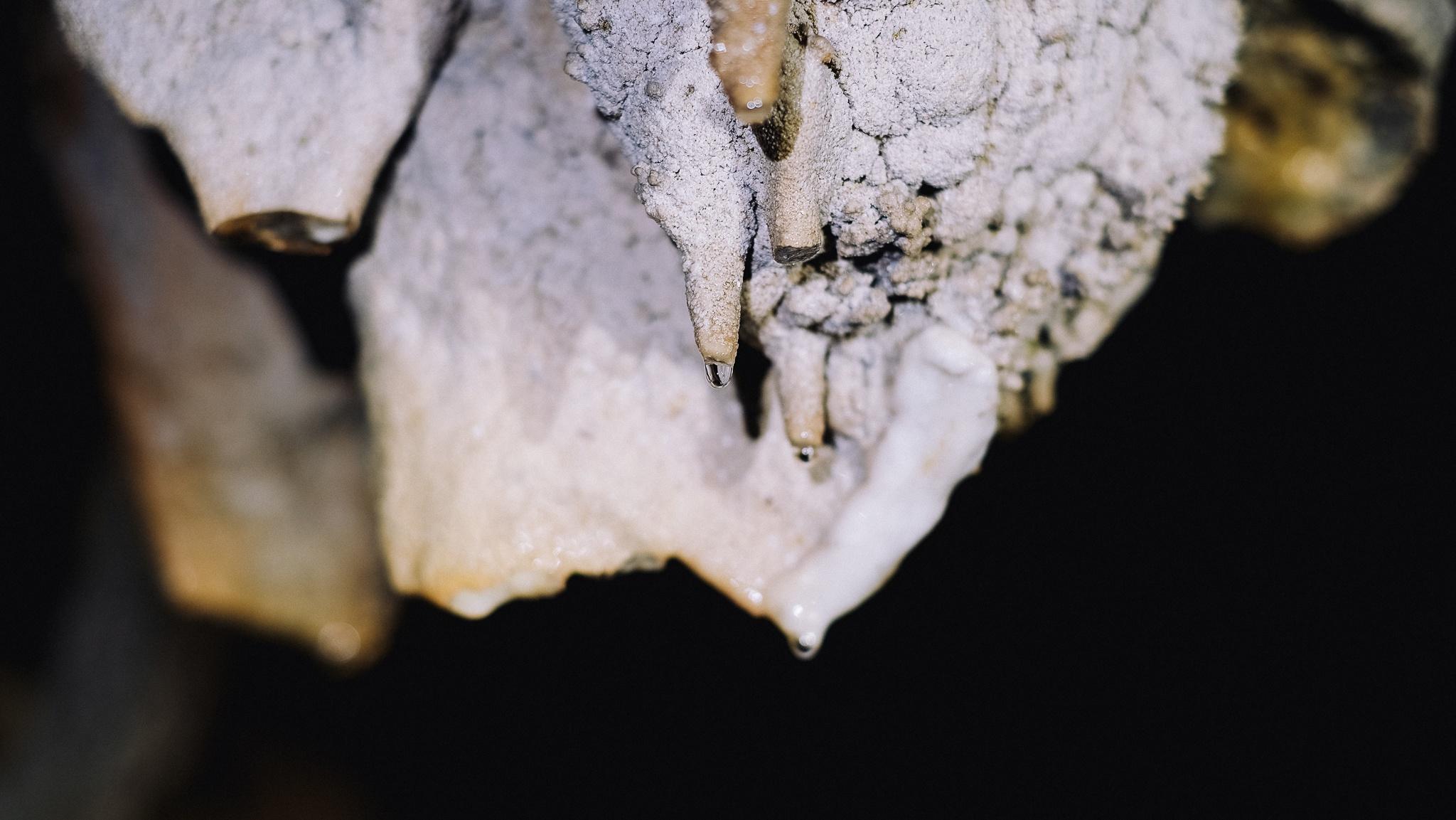 Tuyệt tác thạch nhũ trong hang Chà Lòi - Ảnh 4.