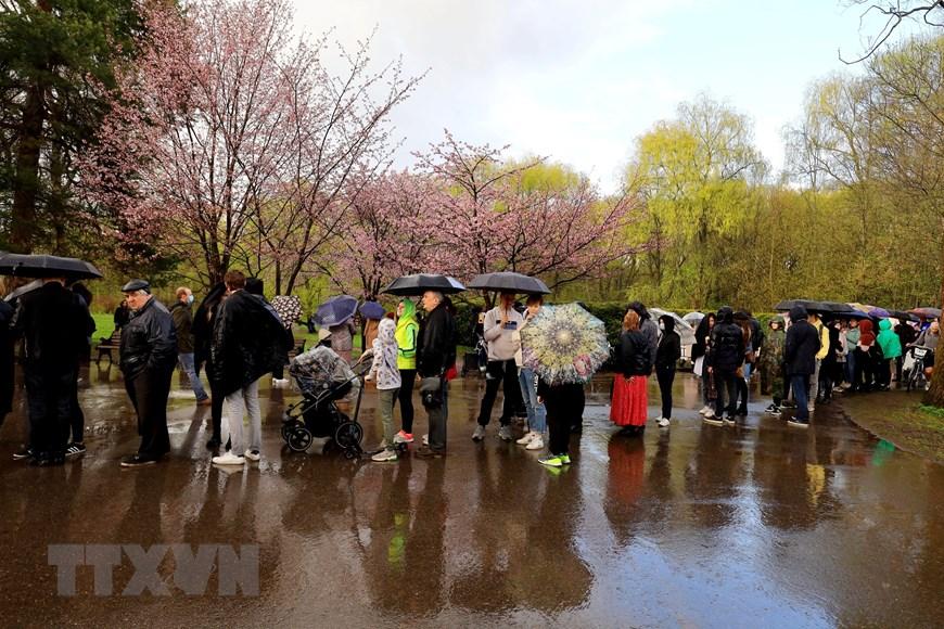 Người dân Moskva đội mưa tới công viên ngắm hoa anh đào đua nở  - Ảnh 3.