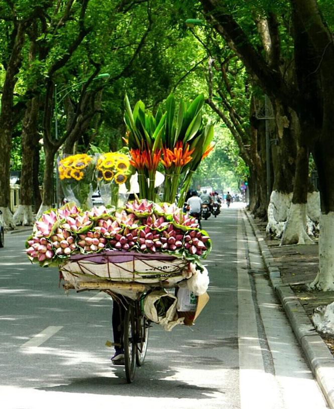 Những xe hoa chở mùa qua phố - Ảnh 4.