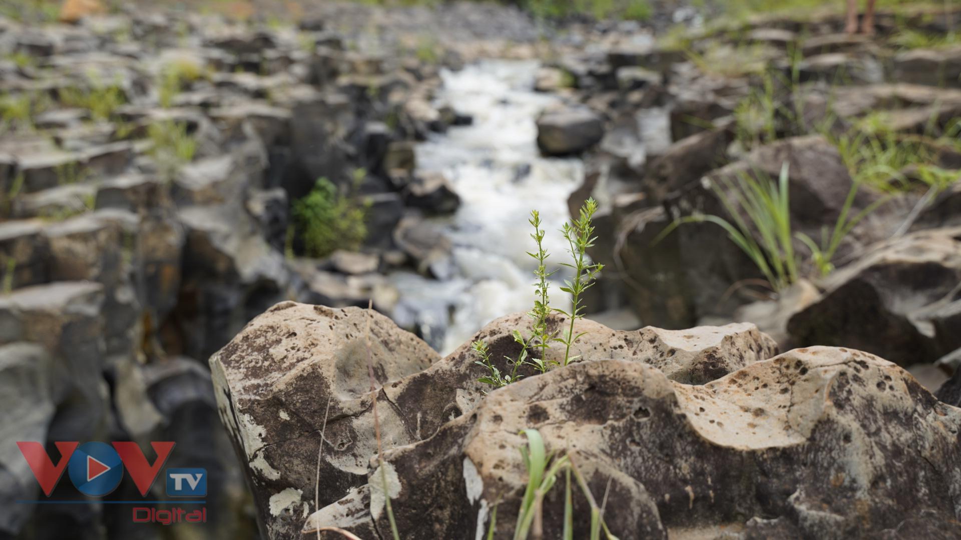 Gia Lai: Mê đắm vẻ đẹp hoang sơ của suối đá núi lửa Ia Ruai - Ảnh 7.