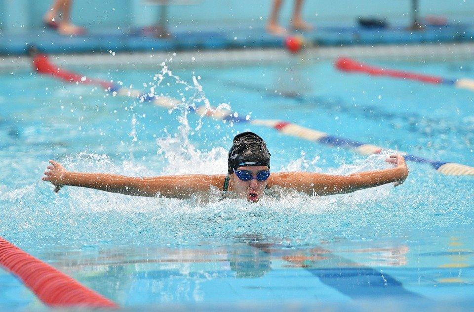 swimming-5315310_960_720.jpg