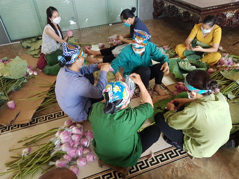 Trà ướp sen tươi - Thức uống tao nhã của người Thái Nguyên - Ảnh 3.