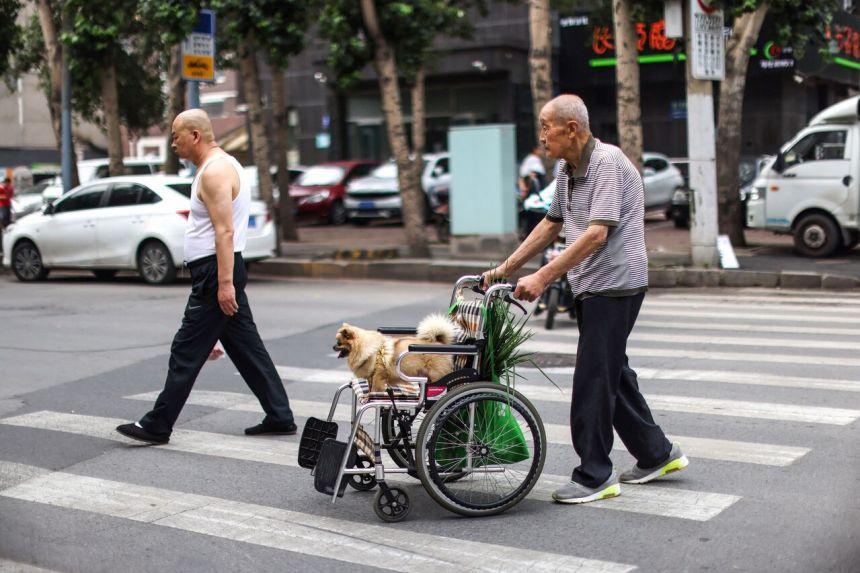 Nở rộ đầu tư nhà dưỡng lão cao cấp tại Trung Quốc - Ảnh 2.