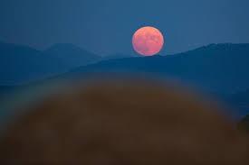 15 bức ảnh Trăng Hươu tháng 7 tuyệt đẹp trên khắp thế giới - Ảnh 2.