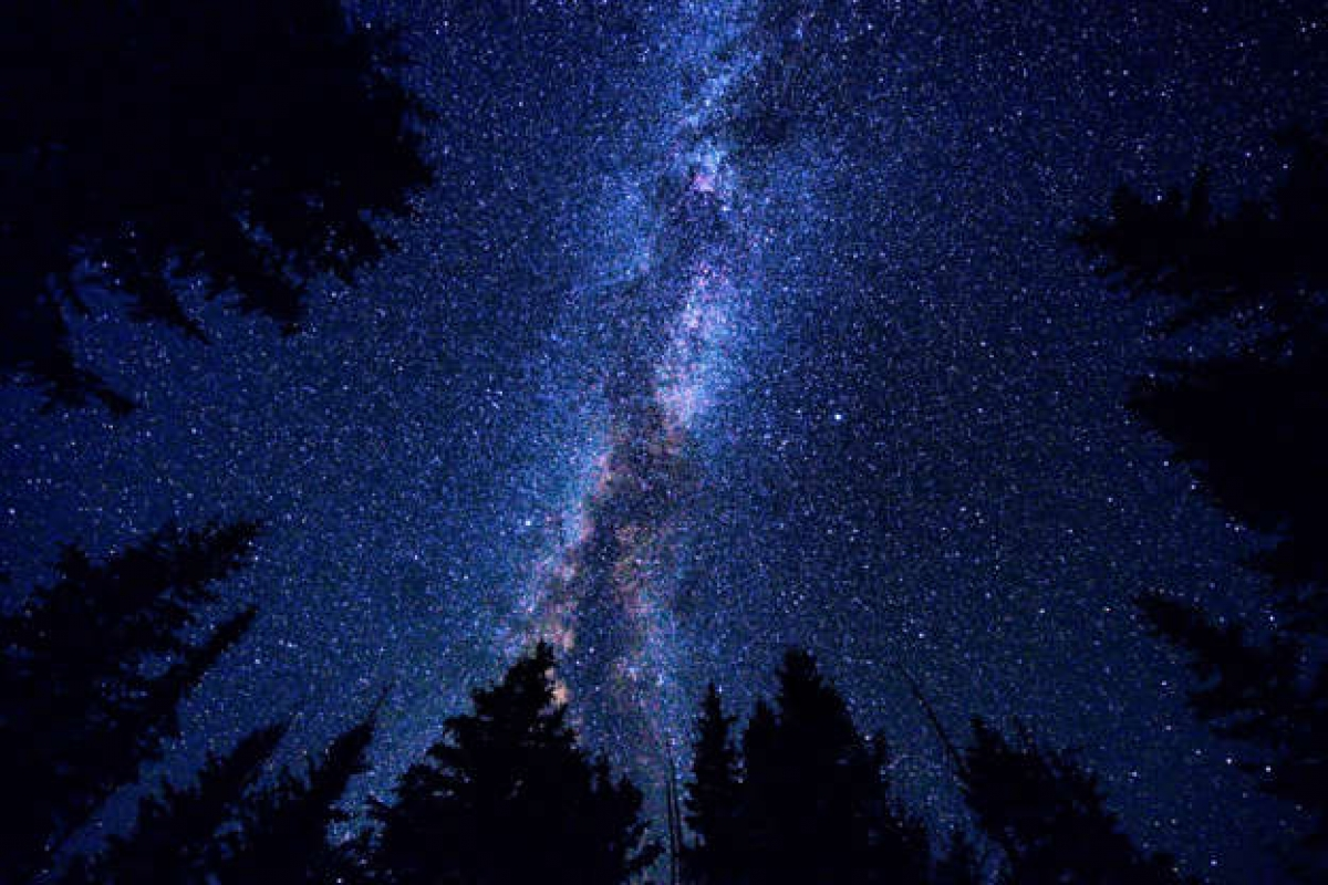 Những giả thuyết thú vị về khả năng tồn tại của người ngoài hành tinh - Ảnh 8.