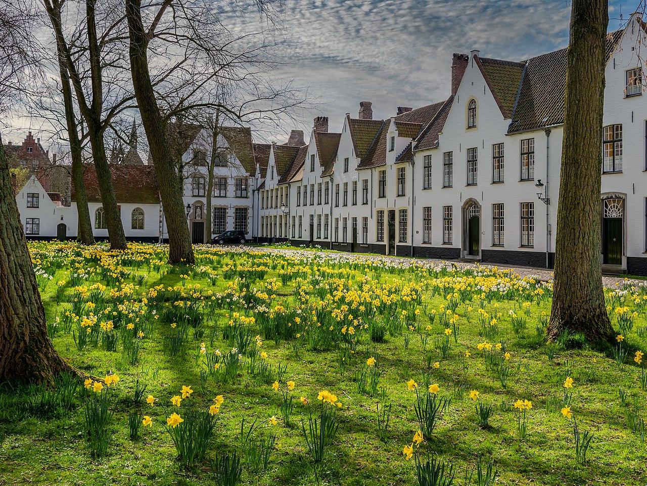 Một ngày khám phá thành phố đẹp nhất nước Bỉ - Ảnh 9.