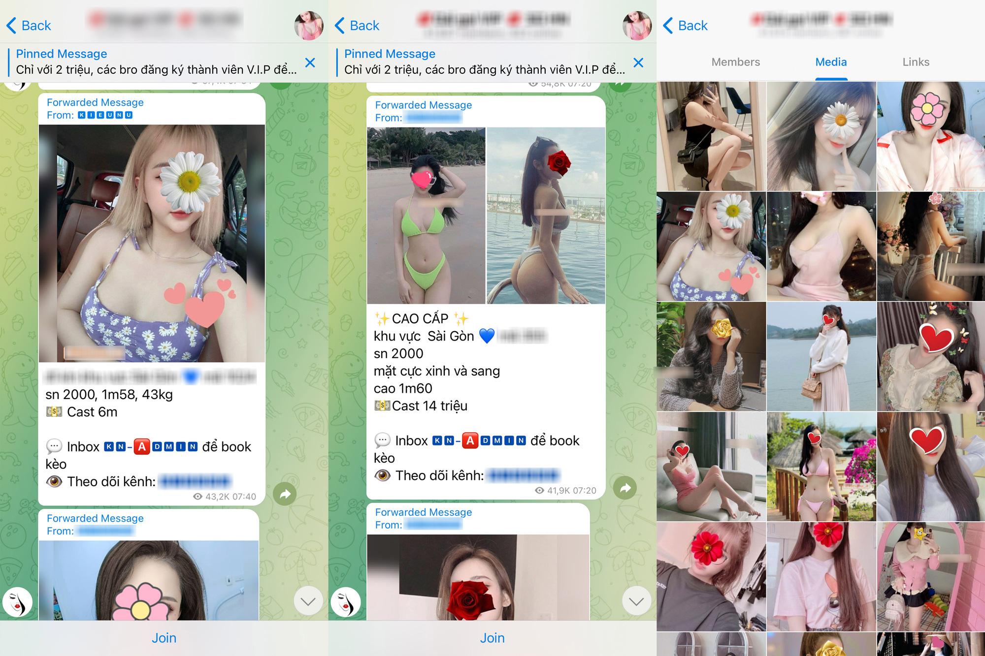 Telegram trở thành ổ chứa mại dâm tại Việt Nam - Ảnh 2.