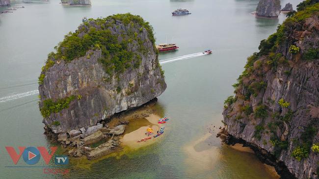 Ngành du lịch Việt Nam thắng lớn tại World Travel Awards 2020 - Ảnh 1.