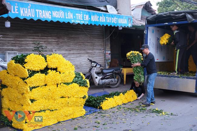 Thu hoạch cúc đại đóa ở vườn hoa Nhật Tân những ngày sát Tết - Ảnh 14.