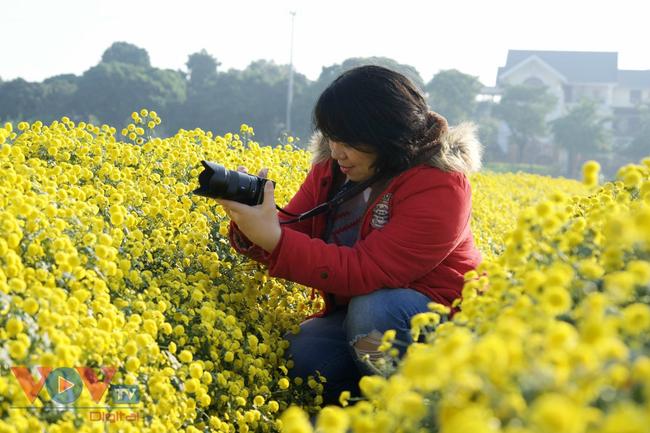 Làng Nghĩa Trai vào mùa thu hoạch hoa cúc chi - Ảnh 16.