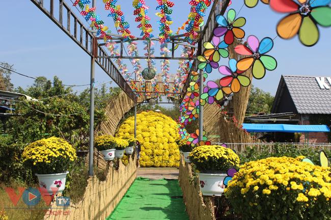 Làng hoa hơn 100 tuổi Sa Đéc tất bật vụ hoa Tết - Ảnh 2.