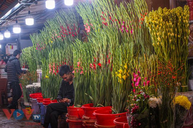 Chợ hoa Quảng An tất bật trong đêm những ngày cận Tết - Ảnh 15.