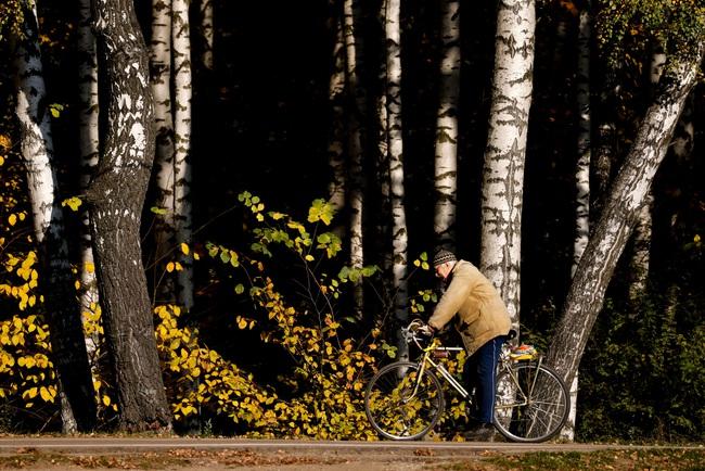 Say đắm vẻ đẹp mùa thu vàng nước Nga - Ảnh 8.