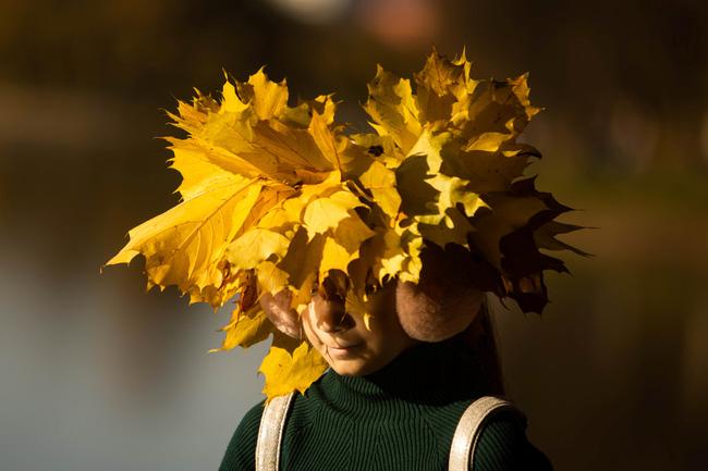 Say đắm vẻ đẹp mùa thu vàng nước Nga - Ảnh 12.