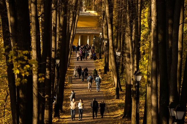 Say đắm vẻ đẹp mùa thu vàng nước Nga - Ảnh 7.