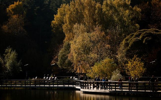 Say đắm vẻ đẹp mùa thu vàng nước Nga - Ảnh 3.
