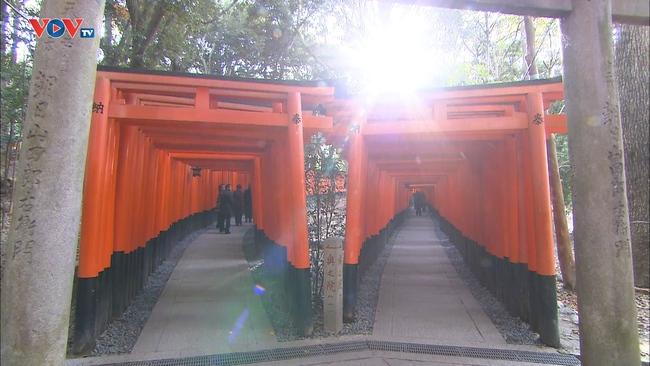 Những Nét Đẹp Vùng Kansai Nhật Bản: Đền Fushimi Inari Taisha - Ảnh 4.