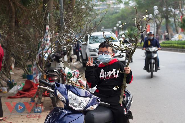 Hoa lê rừng đổ bộ xuống phố phục vụ người dân Thủ đô chơi Xuân - Ảnh 11.