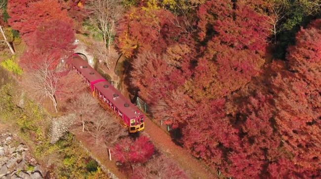 """Những điểm đến tuyệt đẹp trong """"12 Nét Đẹp Vùng Kansai Nhật Bản""""  - Ảnh 18."""