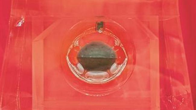 Trung Quốc lần đầu tiên công khai mẫu vật Mặt Trăng - Ảnh 1.