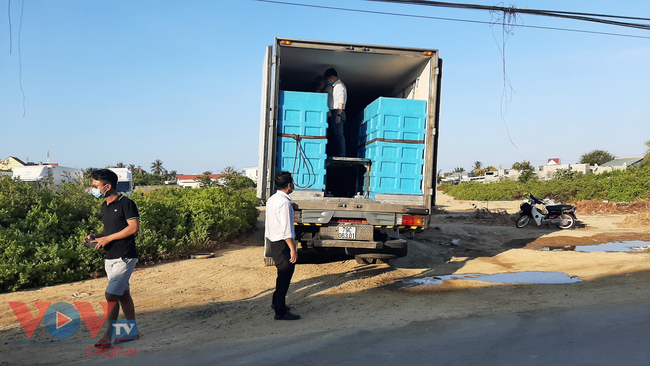 Bài 1: Công ty TNHH Linh Phát (Khánh Hòa) có làm trái Thông tư 48 về thẩm định chất lượng tôm hùm xuất khẩu sang Trung Quốc?. - Ảnh 3.