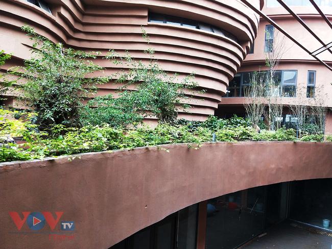 Người dân Thủ đô 'phát sốt' với bảo tàng gốm Bát Tràng 150 tỷ đồng - Ảnh 15.