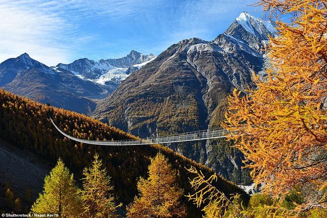 Những cây cầu treo đi bộ ngoạn mục trên thế giới - Ảnh 1.