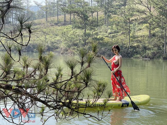 Cắm trại Đà Lạt - Trải nghiệm sự khác biệt giữa núi rừng - Ảnh 4.