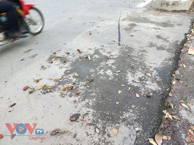 Hà Nội: Hàng chục ô tô 'vô tư' đậu dưới lòng đường bán trái cây - Ảnh 7.