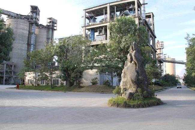 Tập đoàn The Vissai tiên phong phát triển bền vững ngành xi măng tại Việt Nam - Ảnh 1.